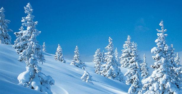 zima1 ilustracija