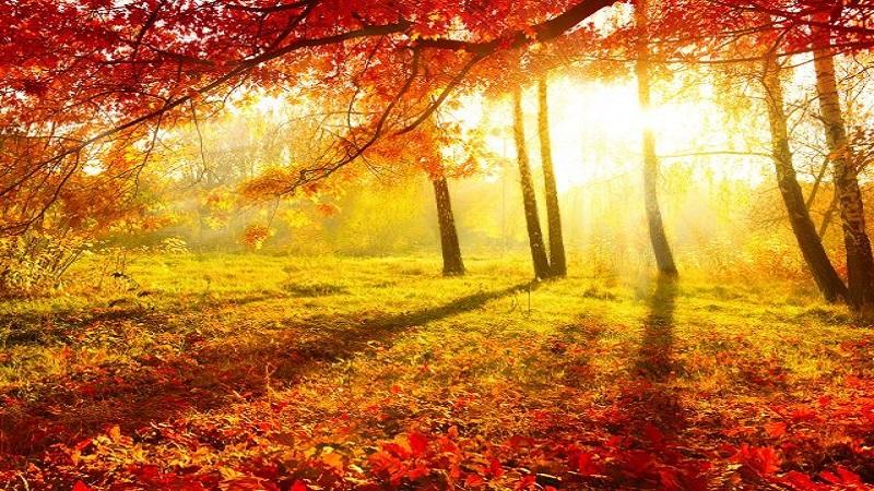 danas-pocinje-jesen