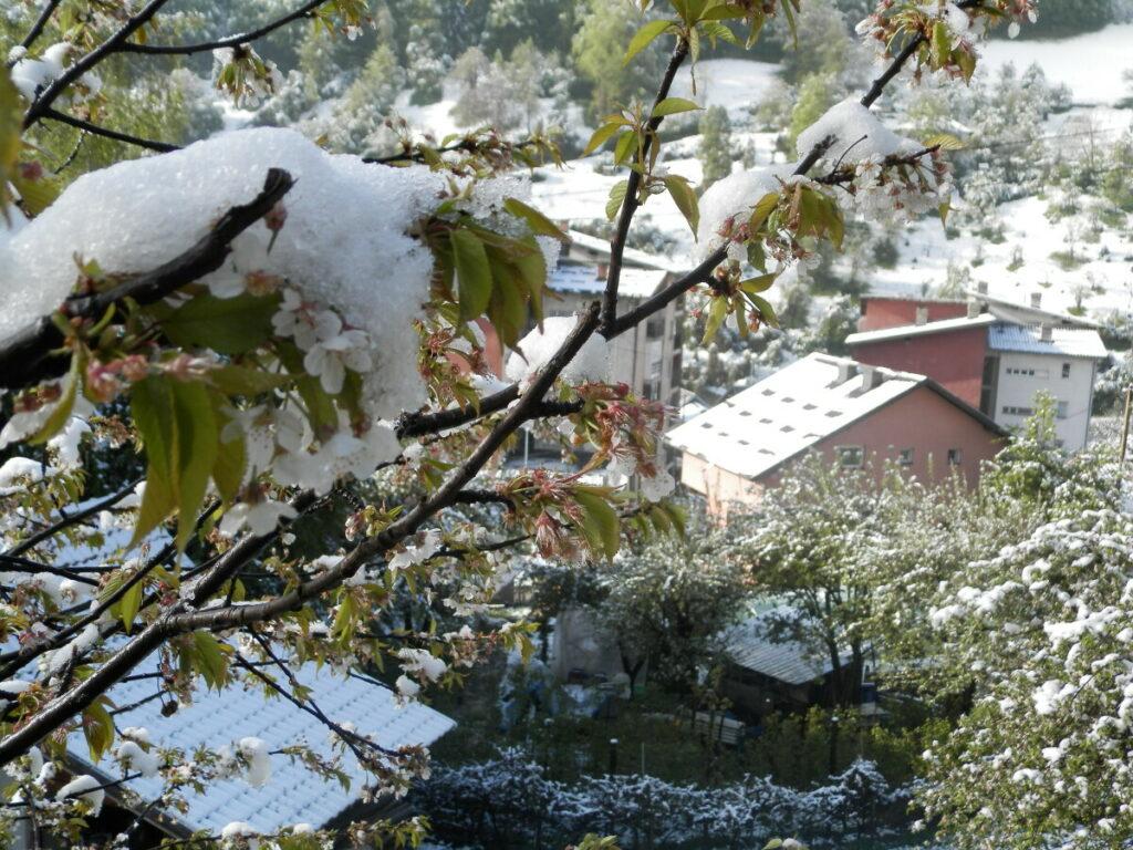 meteorolozi-za-danas-najavili-sneg,-stize-zima