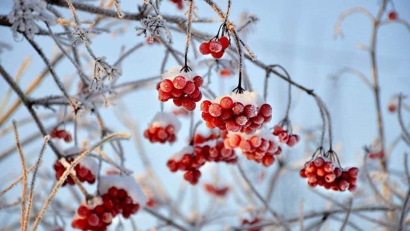danas-pocinje-zima