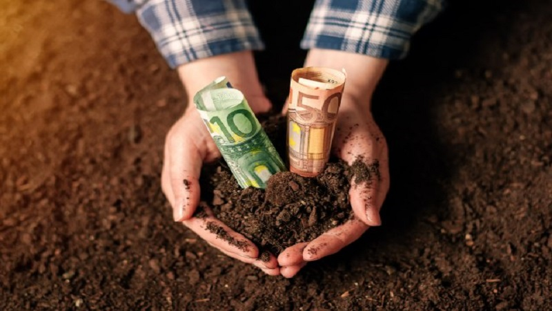 nedimovic:-ove-godine-rast-u-poljoprivredi-za-pet-odsto