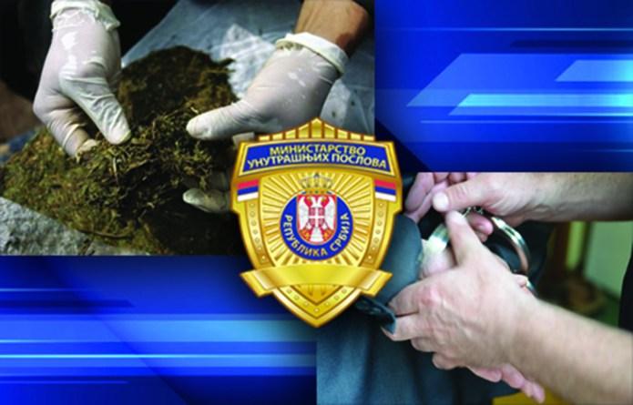 policija-u-leskovcu-pronasla-oko-2,5-kg-droge,-oruzje-i-24.500-evra