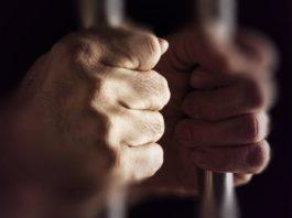 prijepoljac-rucnim-kolicima-svercovao-30-kg-marihuane-preko-granice,-osudjen-na-3-godine-i-4-meseca-zatvora