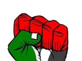 sdp-organizuje-skup-podrske-narodu-palestine-u-novom-pazaru