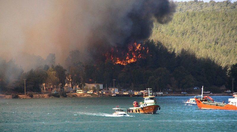 evakuisani-turisti!-u-pozaru-na-jugu-turske-stradalo-najmanje-cetvoro