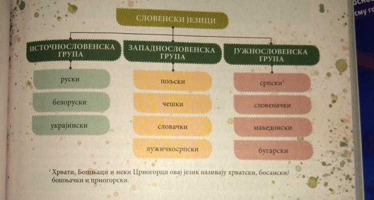 bnv:-politika-negiranja-bosanskog-jezika-u-udzbeniku-gramatika-srpskog-jezika